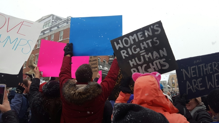 Women's march on Washington, Park City Chapter